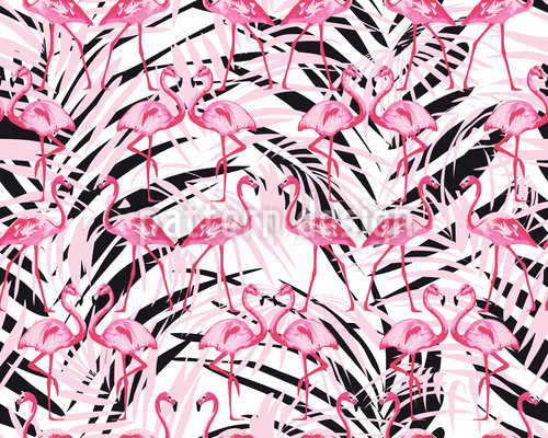 Flamingos In Palm Beach Designmuster