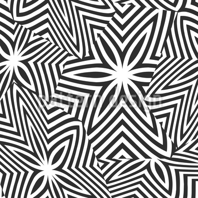 Zerbrochene Zebra Sterne Rapport