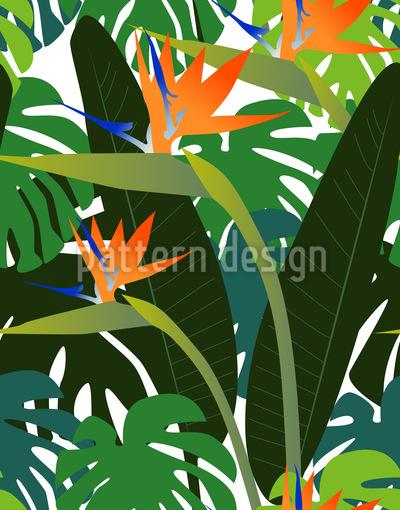 Strelitzia Vektor Design